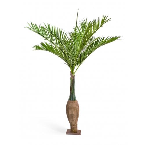 Бутылочная Пальма искусственная 345 см